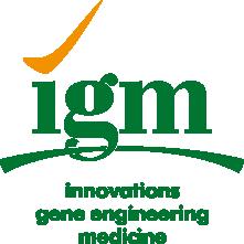IGM-BrendBook